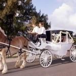 transportation_bridal